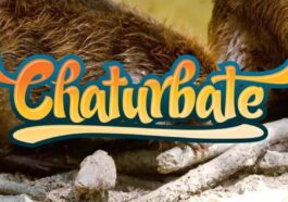 Top 10: Hottest Chaturbate Hairy Cam Girls for Nude Shows (2021)
