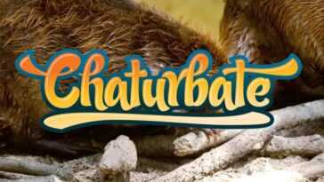 Top 10: Hottest Chaturbate Hairy Cam Girls for Nude Shows (2019)